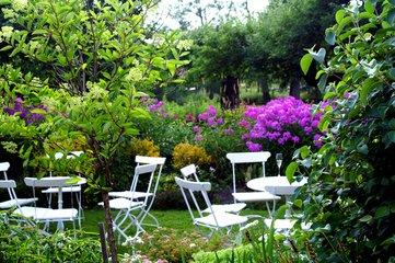colorful-garden-1226667